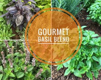 Gourmet Basil Seed Mix, Heirloom Basil Seed Blend, 5 Varieties of Heirloom Basil Seeds, Grow Your Own Organic Basil