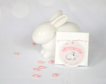 Printable Favor Tag - Some Bunny Birthday