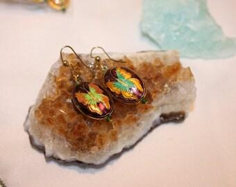 Cloisonne Butterfly earrings - dark-free shipping in US