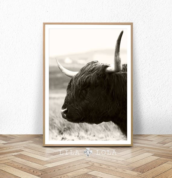 Highland Cow Print, Wall Art, Modern Boho Nursery Decor, Digital Download, Printable Large Poster, Bohemian, Farmhouse Cow Print, Scottish