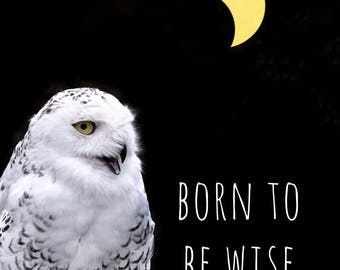 Born to be Wise PRINT - moon owl quote, fine art home decor, motivational home wall inspirational typography, bedroom crescent eclipse funny