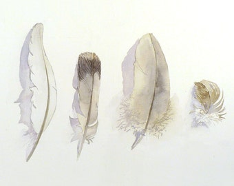 Feathers, Artwork, Black white, Prints, Feather,Tribal, Bird feathers, Watercolor feathers, White feathers, Gray, grey Feathers