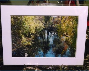Bronxville Stream Photograph (2005)