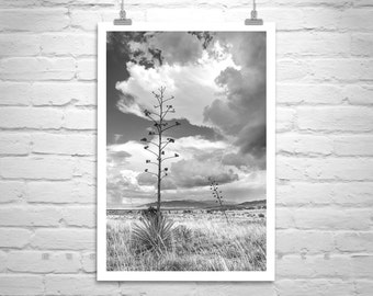Black and White Landscape Photography, Western Picture, Thunderstorm Art, Arizona Monsoon Photo, Prairie Landscape Art, Huachuca Mountains
