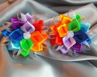 Summer outdoors Kanzashi rainbow hair clips set of 2 hair clip rainbow alligator bright  hair clip girl's hair clips baby hair ties bows