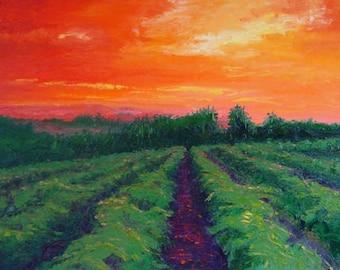 Willamette Valley Oregon Oil on Canvas