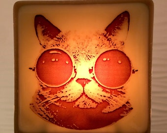 Steampunk Cat Night Light Fused Glass