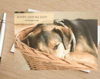 Dog Happy Gotcha Day Greetings Card