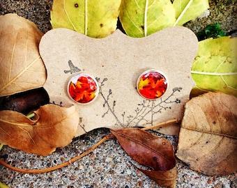 Autumn Leaves Post Earrings