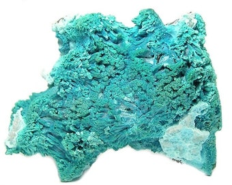 Plancheite Crystals Rare Turquoise Blue Copper Mineral with Chrysocolla, Mineral Specimen, Collector's Choice