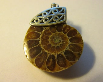 Prehistoric Ammonite Fossil Pendant with Decoratie Silver Tone Cap and Bail, 35mm