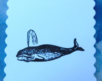Whale (pack of 5 cards)