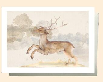 Stag card, Wildlife card, Handmade greetings card, blank Birthday Card, Greetings Card, Hand Made card , Nature card, Fine art