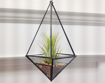 Elongated Pyramid Glass Orb Air Plant Planter 7.5 Inches Tall