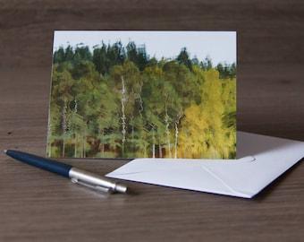 Tree reflections greetings card (blank inside)