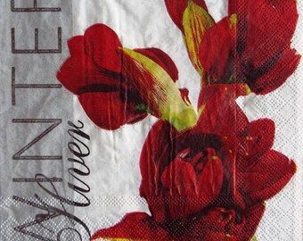 TOWEL in paper #F080 red Amaryllis