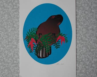 Kaka Print - A4 - Unframed
