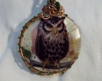 Owl on shell natural pendant wire wrapped Necklace
