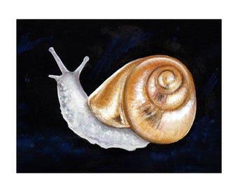 Gold Snail Shell Surreal Watercolor Art Print - Au