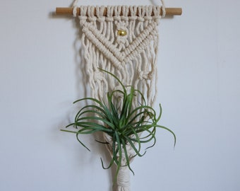 Macrame Air Plant Hanger / Airplant Holder / Modern Macrame / Mini Wall Hanging / Boho Home Decor