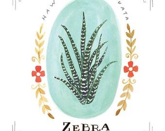 Zebra Plant Print, Zebra Plant Art Print, Zebra Plant Illustration, Zebra Plant Print, Zebra Plant Fine Art Print