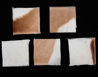 """Natural Springbok Skin 4""""x4"""" Project Pieces (5 pieces) (155-PP-0404)"""