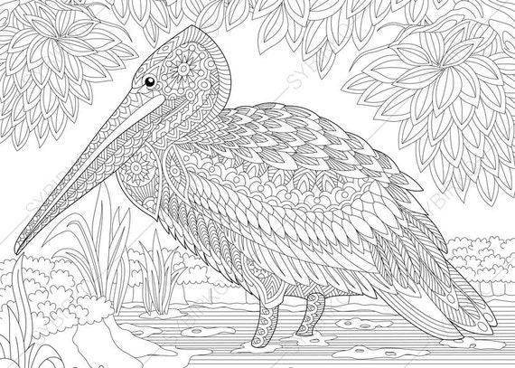 Pelican Bird. Coloring Pages. Animal Coloring Book Pages For