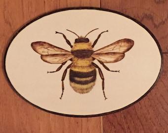 Beautiful Bee wall plaque