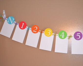 Rainbow Newborn to 12 Month Photo Banner  - Candy, Candyland, Bubble Gum Birthday Party - 1st Birthday