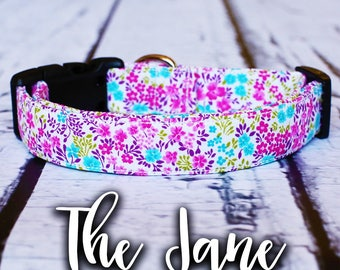 "Dog Collar-Vintage Dog Collar, Girl Dog Collar, Buckle Collar, Chic Dog Collar, Floral Dog Collar, ""The Jane"""