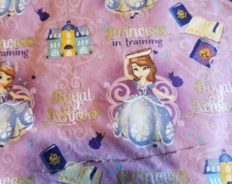 Custom  Princess Sofia Diaper you choose type and size Nb/Sm or Onesize