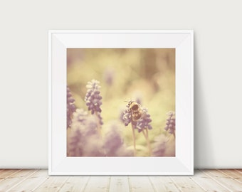 bee photograph insect photograph purple flower photograph animal photography bumble bee print insect print spring photograph
