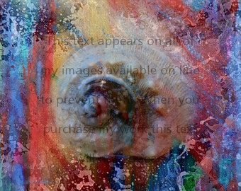 Ocean Nebula in My Window _Print_ Digital Art Composition_photography_painting.