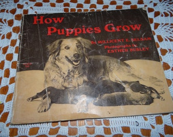 "1971 Vintage Children's Book.. ""How Puppies Grow"" ... Paperback"