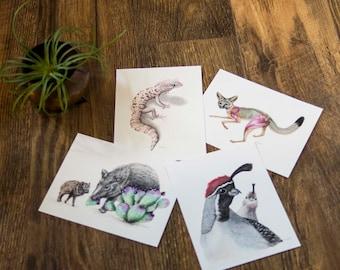 Desert Wildlife Postcards- Scientific Illustration, Nature Art, Postcard from the sonoran desert