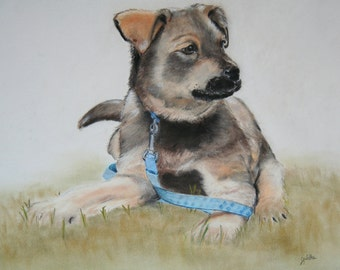 16x20 Custom pet & wildlife portraits hand painted with pastels/dogs/cats/  puppys/kittens/horses/from your photographs