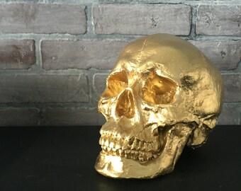 ANY COLOR XL Skull Sculpture / Faux Human Skull Replica / Faux Taxidermy // Skeleton // Gothic Decor // Halloween // Sugar Skull // Figurine