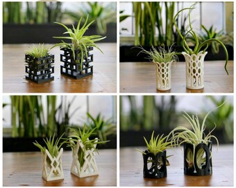 """Unique """"Breathing"""" Air Plant Holders Multiple Styles"""