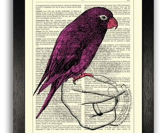 Pink Parrot Perched on Hand Art Print Wall Decor Gift, Pink Home Decor, Girls Room Wall Art, Parrot Illustration, Girlfriend Gifts, Poster