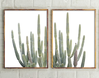 Desert Cactus Prints, Cactus Wall Decor, Cactus, Botanical, Cactus Print, Wall Art, Nursery Decor, Prints, Succulents, Art Prints, Australia