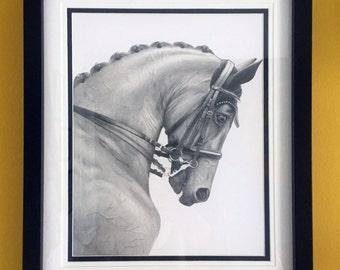 Dressage horse Limited edition print horse artwork