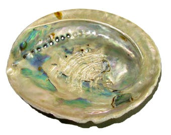 """Genuine African Abalone Shell Natural Medium 4""""-5"""" Crafts Decor Jewelry Smudging"""