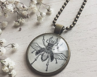 scarab necklace - scarab jewelry - scarab - beetle necklace - egyptian scarab - ready to ship - dictionary art - oddities - scarab pendant