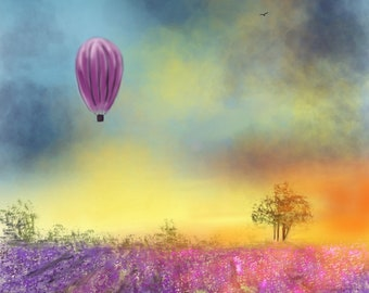 Baloon And The Sunny Fields