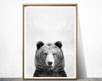 Bear Print Bear Poster Wall Art Print Animal Print Bear Art