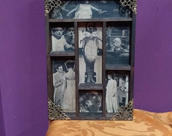 Bride of Frankenstein Mod.4 Cabinet of Curiosities