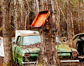 1960-1964 Chevy Nova with a wagon trailer grown into a Tree Photograph