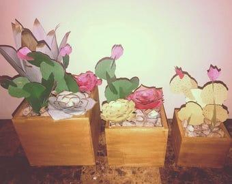 Paper Cacti Arrangement