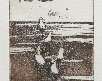 original etching with aquatint - seagulls on the beach
