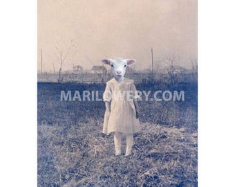 Creepy Cute Lamb Art Anthropomorphic Animal in Clothes 5x7 Inch Collage Print, Weird Wall Decor, Small Wall Art, frighten